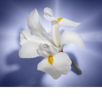 Lancôme La Vie Est Belle eau de parfum pour femme 3 x 18 ml (1x rechargeable + 2x recharge)