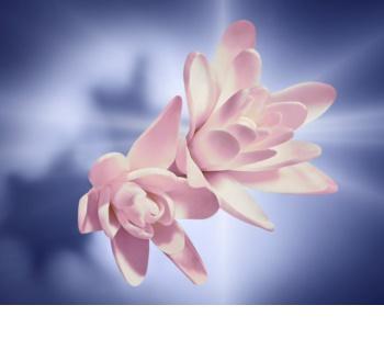 Lancôme La Vie Est Belle Intense Eau de Parfum voor Vrouwen  75 ml