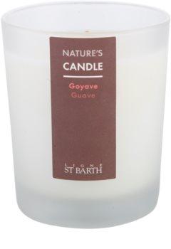 Ligne ST. Barth Guave lumânare parfumată  180 g