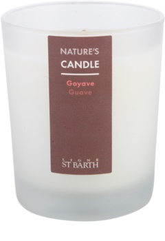 Ligne ST. Barth Guave vela perfumado 180 g