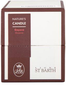 Ligne ST. Barth Guave ароматизована свічка  180 гр