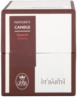 Ligne ST. Barth Guave candela profumata 180 g