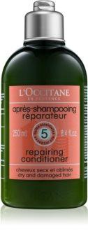 L'Occitane Intensive Repair Conditioner für trockenes und beschädigtes Haar