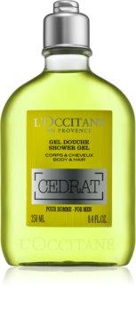 L'Occitane Homme Body and Hair Shower Gel for Men