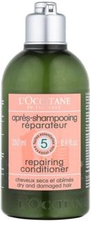 L'Occitane Hair Care odżywka do włosów suchych i zniszczonych