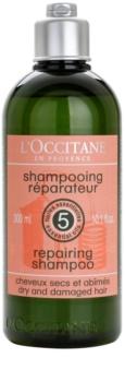 L'Occitane Hair Care champô regenerador para cabelo seco a danificado