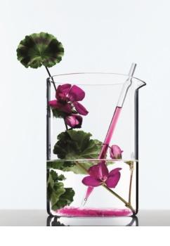 L'Oréal Paris Botanicals Radiance Remedy šampón pre farbené vlasy