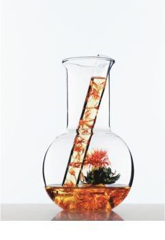 L'Oréal Paris Botanicals Rich Infusion balzam za suhe lase