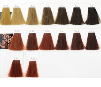 L'Oréal Professionnel Inoa ODS2 farba do włosów