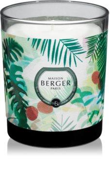 Maison Berger Paris Immersion Lychee Paradise vonná svíčka 240 g