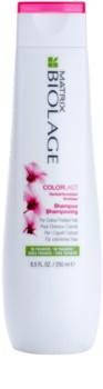 Matrix Biolage Color Last šampón pre farbené vlasy