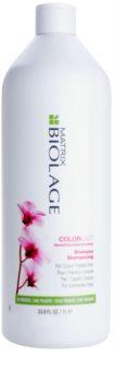 Matrix Biolage Color Last shampoing pour cheveux colorés