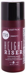 Matrix Style Link Perfect poudre cheveux pour donner du volume