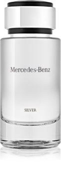 mercedes-benz mercedes-benz silver