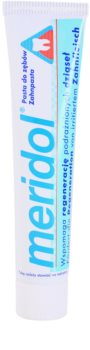 Meridol Dental Care Toothpaste Supporting Regeneration Of Irritated Gums