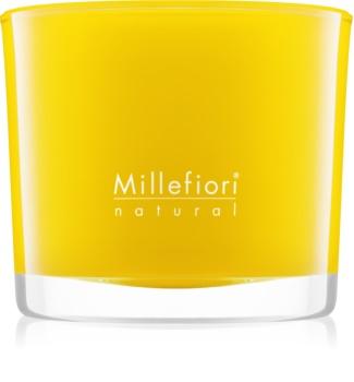 Millefiori Natural Pompelmo vonná svíčka 180 g