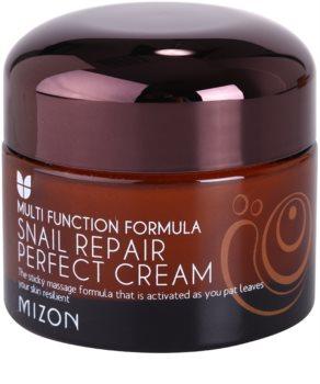 Mizon Multi Function Formula crema viso con bava di lumaca filtrata al 60%