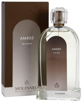 Molinard Les Elements Ambre Eau de Toilette für Damen 100 ml