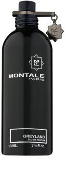 Montale Greyland eau de parfum teszter unisex 100 ml