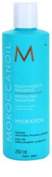 Moroccanoil Hydration hydratisierendes Shampoo mit Arganöl