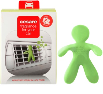 Mr & Mrs Fragrance Cesare Citrus deodorante per auto 1 pz I.