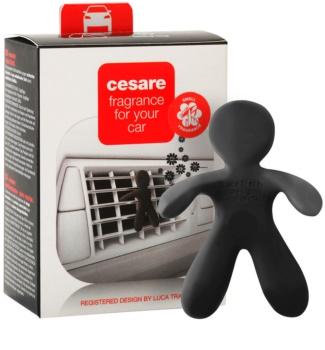 Mr & Mrs Fragrance Cesare Cedar Wood illat autóba 1 db I.
