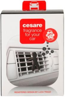 Mr & Mrs Fragrance Cesare Cedar Wood Car Air Freshener 1 kpl I.