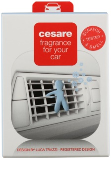 Mr & Mrs Fragrance Cesare Cashmere désodorisant voiture 1 pcs