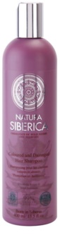 Natura Siberica Wild Herbs and Flowers Shampoo für gefärbtes und geschädigtes Haar
