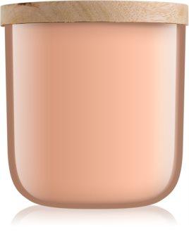 Paddywax Foundry Bergamont and Mahogany lumanari parfumate  340 g
