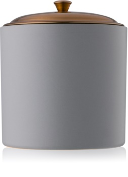 Paddywax Hygge Vetiver + Cardamom vela perfumado 425 g