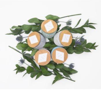 Paddywax Sonora Wildflowers & Birch bougie parfumée 283 g