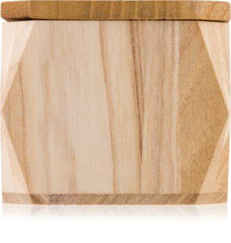 Paddywax Woods Redwood & Amber vonná svíčka 141 g