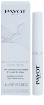 Payot Expert Pureté Purifying Concealer With Schale Extract