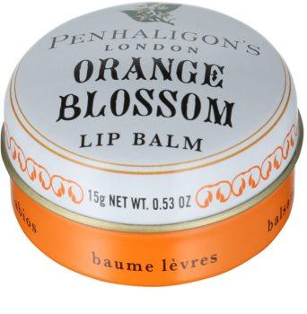 Penhaligon's Anthology: Orange Blossom balzám na rty pro ženy 15 g