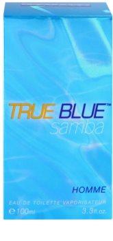 Perfumer's Workshop True Blue Samba тоалетна вода за мъже 100 мл.