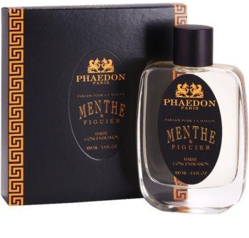 Phaedon Mint and Fig Room Spray 100 ml