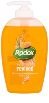 Radox Feel Fresh Feel Revived tekuté mydlo na ruky