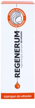 Regenerum Hair Care champô regenerador para cabelo seco a danificado