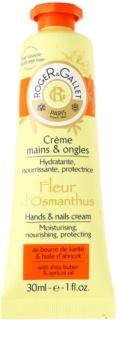 Roger & Gallet Fleur d'Osmanthus creme para mãos e unhas com manteiga de karité e óleo de caroço de alperce