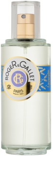 Roger & Gallet Lavande Royale Eau de Toilette unisex 100 ml