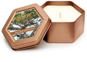Root Candles Japanese Cedarwood świeczka zapachowa  113 g w puszcze