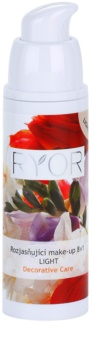 RYOR Decorative Care fond de teint illuminateur 8 en 1
