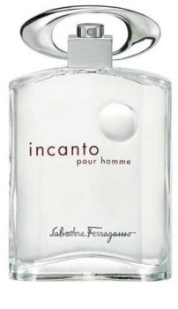 Salvatore Ferragamo Incanto Pour Homme Eau de Toillete για άνδρες 100 μλ