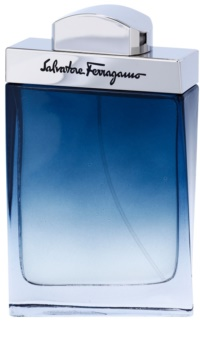 Salvatore Ferragamo Subtil Pour Homme Eau de Toilette for Men 100 ml