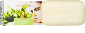 Sea of Spa Dead Sea Treatment Bar Soap With Seaweed
