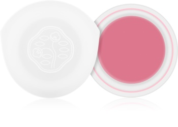 Shiseido Eyes Paperlight fard de pleoape cremos