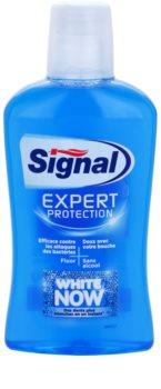 Signal White Now Expert Protection elixir bocal com efeito branqueador