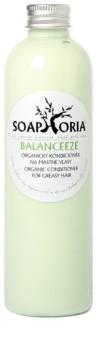 Soaphoria Hair Care après-shampoing organique pour cheveux gras