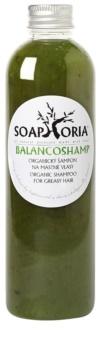 Soaphoria Hair Care płynny szampon organiczny do włosów przetłuszczających się